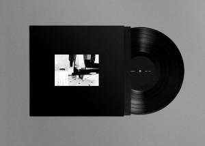 the night day vinyl